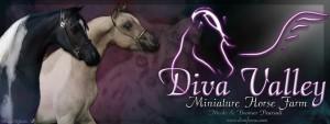 DVM Farms banner